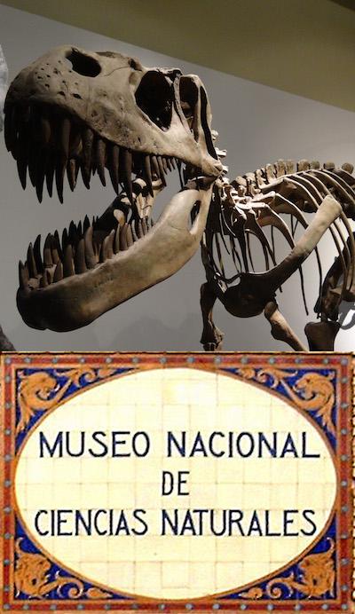 museo de ciencias naturales con niños