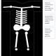 Disfraz de esqueleto casero para niños en halloween