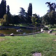 Parque Público con lago y zonas infantiles en Aluche